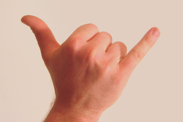 Gesture_raised_fist_with_thumb_and_pinky_lifted.jpg