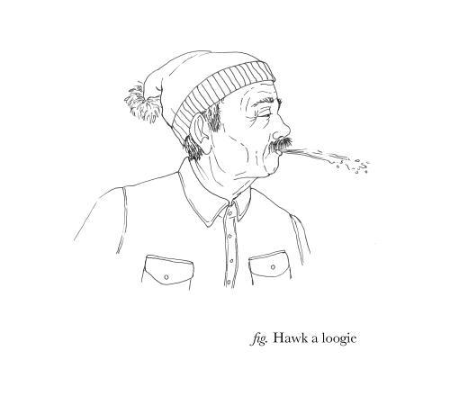 hawkaloogie.thumb.jpg.6db562b17ea267d0ab